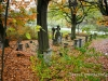 nowy-sacz-zabelcze-cmentarz