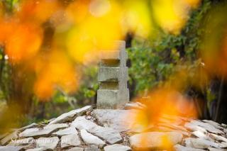 Ożenna cmentarz wojenny