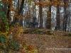 wisniowa-cmentarz17