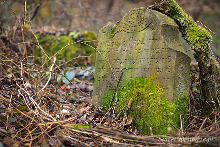 Jodłowa cmentarz żydowski (kirkut) – old jewish cemetery.