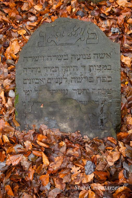 ratowanie żydowskich nagrobków