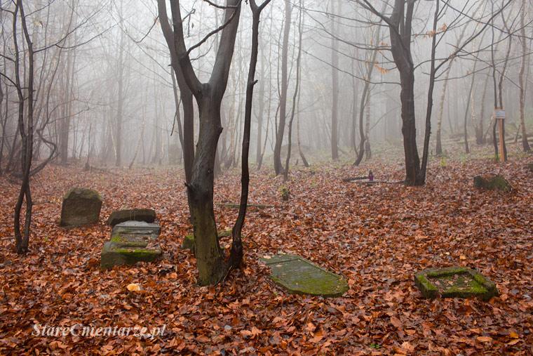 Jodlowa jewish cemetery