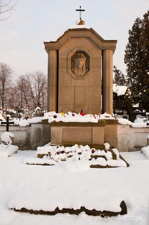 Brzostek pomnik główny