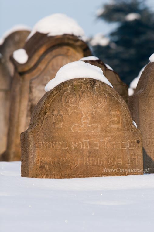 Ryglice cmentarz żydowski24
