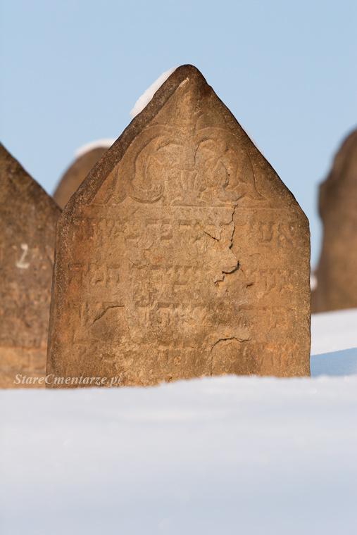 Ryglice cmentarz żydowski41