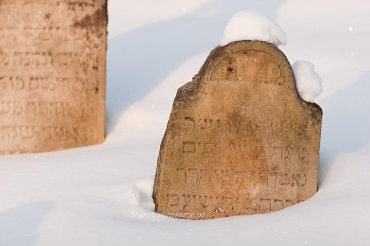 Ryglice jewish cemetery