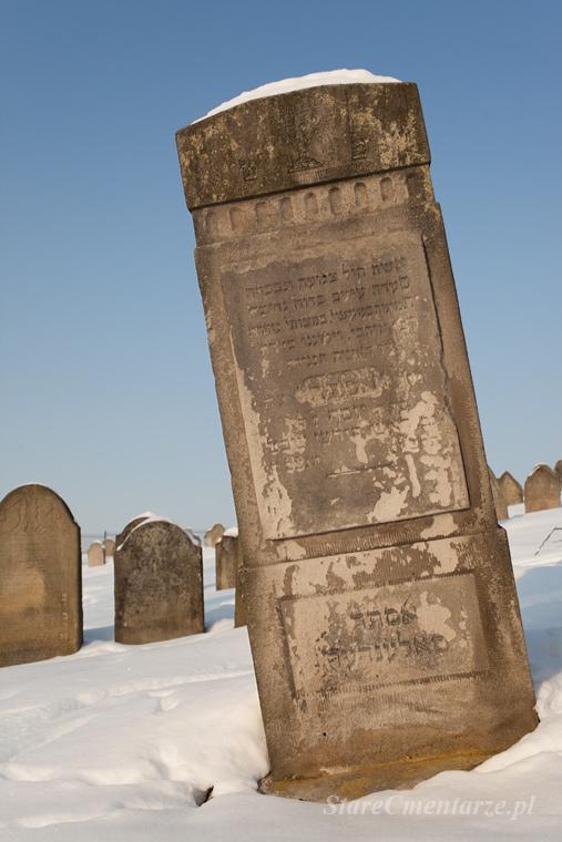 Ryglice cmentarz żydowski wysoka macewa75