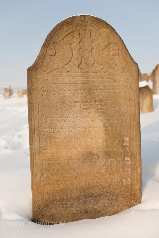 Ryglice cmentarz żydowski77