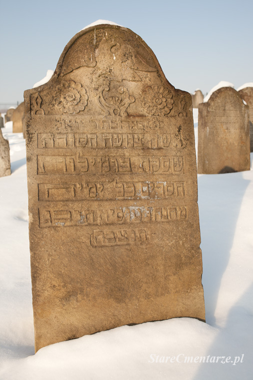 Ryglice cmentarz żydowski89