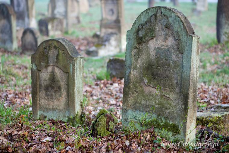 cmentarz żydowski w Szczucinie