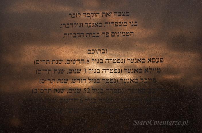 Żydzi brzosteccy
